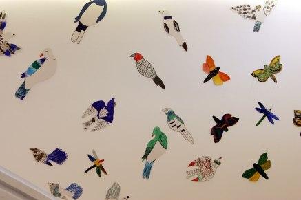 A wall of birds Te Uru Gallery